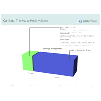 Cartilage - The Key to Healthy Joints