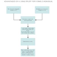 Living Trust - Single