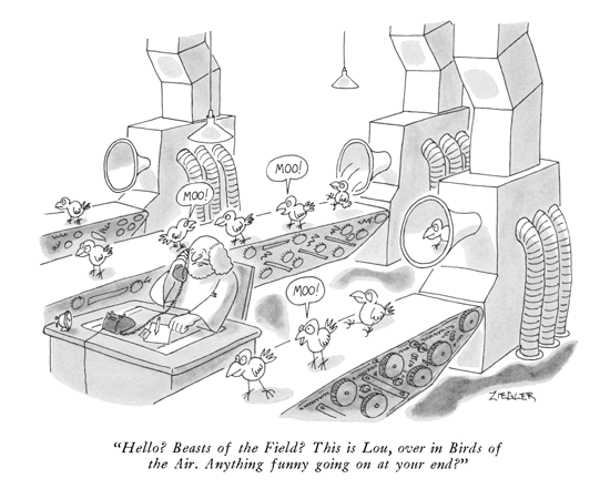 New Yorker cartoon - Anything funny going on over there
